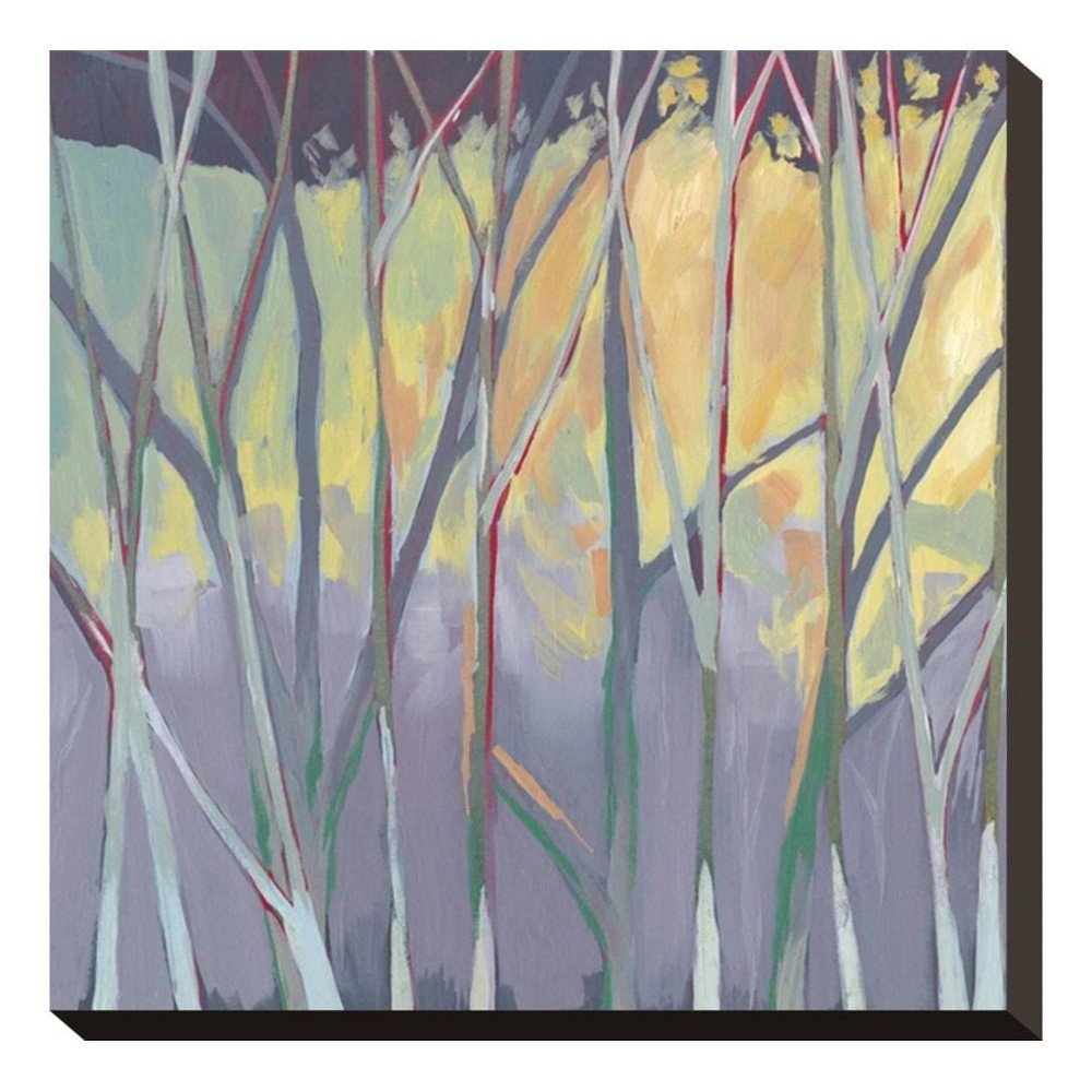 Tangled Twilight II Stretched Canvas Print 13x13 - Art.com, Multicolored