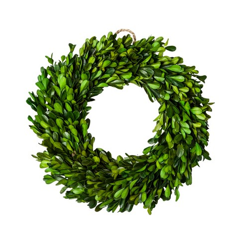 "11"" Dried Boxwood Leaves Wreath Green - Smith & Hawken™ - image 1 of 3"