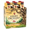 Angry Orchard Unfiltered Hard Apple Cider - 6pk/12 fl oz Cans - image 3 of 4