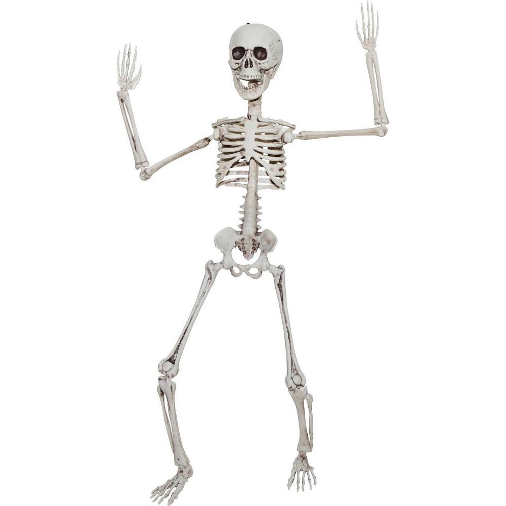 "Image of ""20"""" Halloween Poseable Skeleton"""