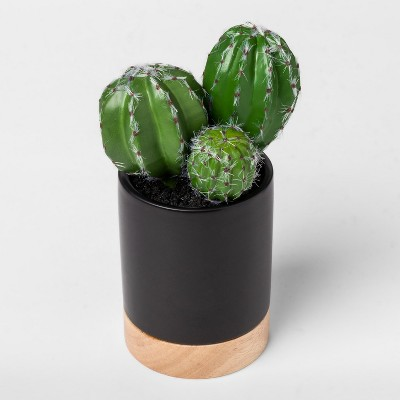 Faux Cactus Plant in Black Pot Small - Project 62™