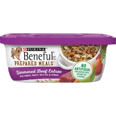 Purina Beneful Prepared Meals Wet Dog Food - 10oz