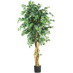 6ft Artificial Palace Style Ficus Silk Tree in Pot - Nearly Natural
