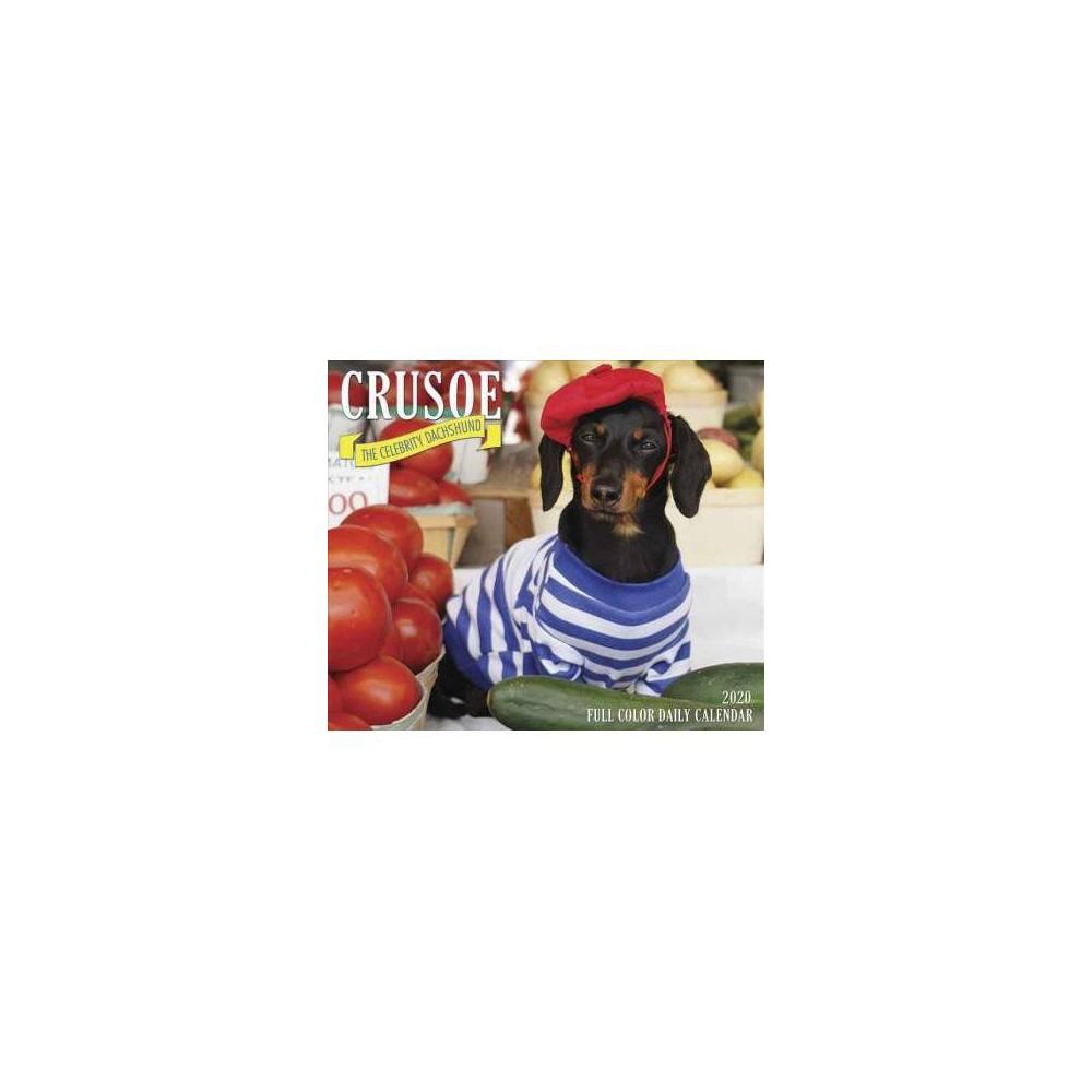 Crusoe the Celebrity Dachshund 2020 Calendar - (Paperback)