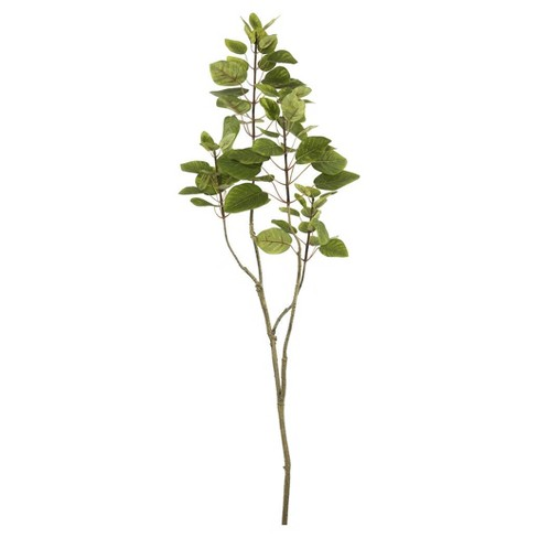 Artificial Cotinus Coggygria Branch (4ft) Green - Vickerman® - image 1 of 1