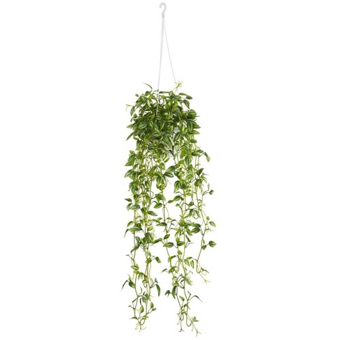 """34"""" x 10"""" Artificial Variegated Wandering Jew in Hanging Basket Green - Nearly Natural - image 1 of 1"""