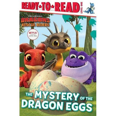 The Mystery of the Dragon Eggs - (DreamWorks Dragons: Rescue Riders) (Paperback)