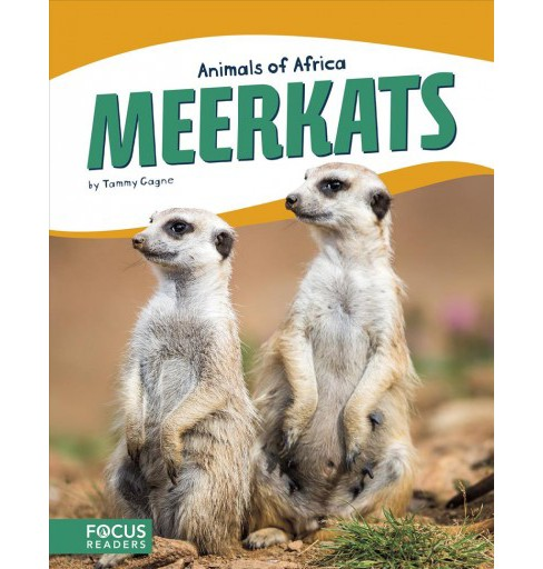 Meerkats -  (Animals of Africa) by Tammy Gagne (Hardcover) - image 1 of 1