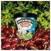 Ben & Jerry's Cherry Garcia Ice Cream - 16oz - image 4 of 4