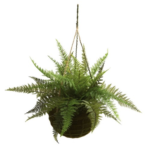 Artificial Leather Fern With Mossy Hanging Basket Indoor Outdoor Set Of 2 Nearly Natural Target