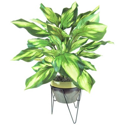 "28"" x 22"" Artificial Hosta in Ceramic Pot with Stand Green - LCG Florals"