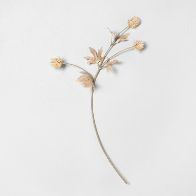 """25"""" Faux Bleached Thistle Stem - Hearth & Hand™ with Magnolia"""
