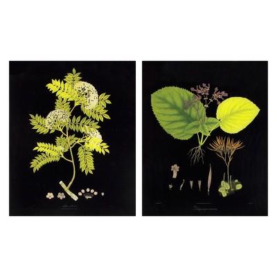 Set of 2 16 x20  Acrylic Botanicals Decorative Wall Art - Threshold™