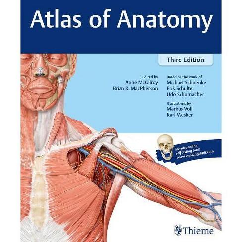 Atlas of Anatomy - 3 Edition (Paperback) - image 1 of 1