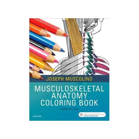 Musculoskeletal Anatomy Coloring Book - By Joseph E. Muscolino ...