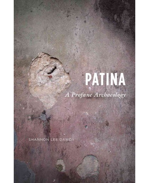 Patina : A Profane Archaeology (Paperback) (Shannon Lee Dawdy) - image 1 of 1