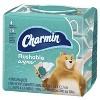 Charmin Freshmates Flushable Wipes - 40ct/4pk - image 2 of 4