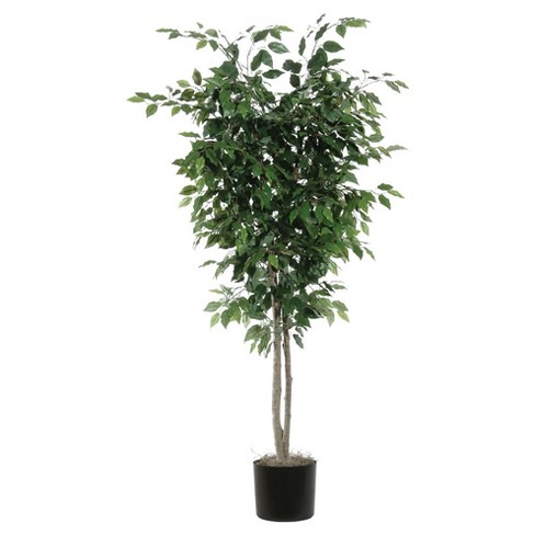 Artificial Ficus Deluxe (6.5ft) Green - Vickerman - image 1 of 1