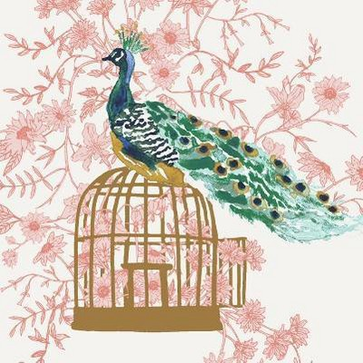 Peacock Blush
