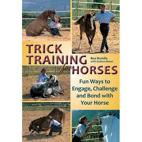 Trick Training for Horses - by  Bea Borelle (Paperback) - image 1 of 1