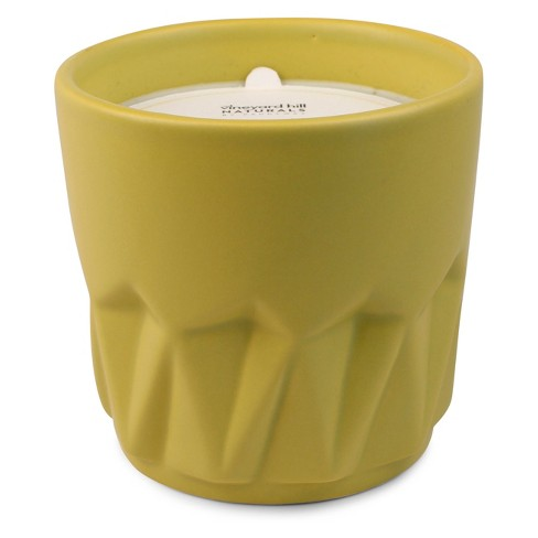 12oz Ceramic Container Candle Ginger Guaiac - Vineyard Hill Naturals by Paddywax - image 1 of 2