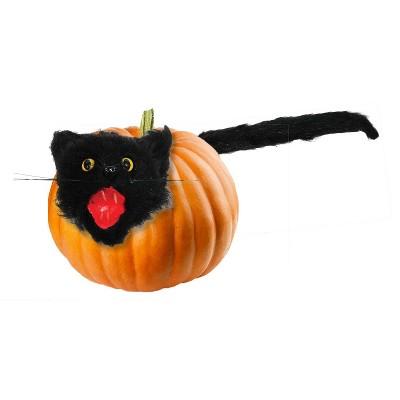 Halloween Cat Pumpkin Push In