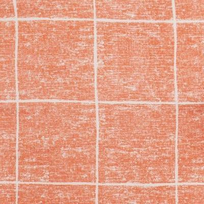 Coral Windowpane
