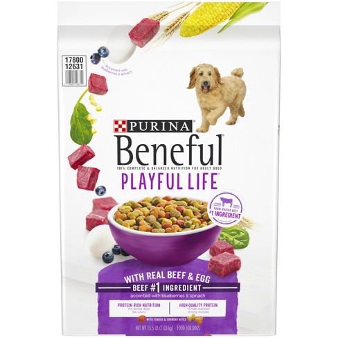 Purina Beneful Playful Life With Real Beef Target