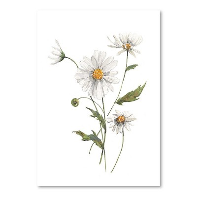 Americanflat Daisy Watercolor by Cami Monet Poster