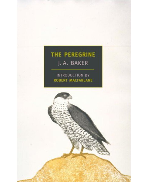 Peregrine -  (New York Review Books Classics) by J. A. Baker (Paperback) - image 1 of 1