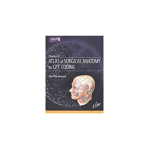 Netters Atlas Of Surgical Anatomy For C Paperback Target