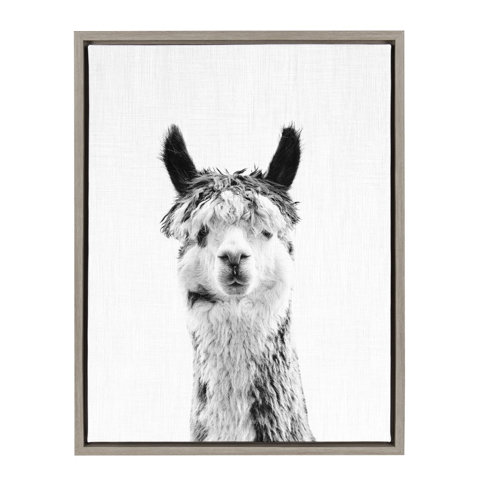 "Image of ""Kate & Laurel 24""""x18"""" Sylvie Llama And Portrait By Simon Te Tai Framed Wall Canvas Gray"""
