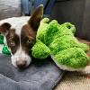 KONG Cozie Ali Aligator Dog Toy - image 3 of 3