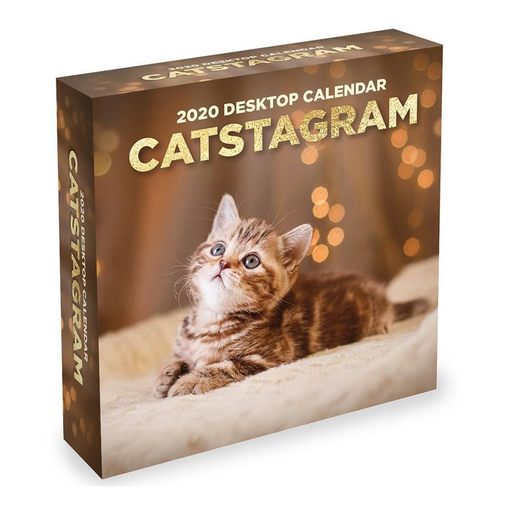 Image of 2020 Daily Desktop Calendar Catstagram