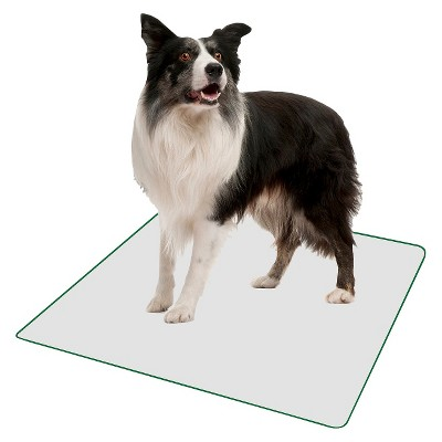 PoochPad Indoor Potty Replacement Reusable Pad - L