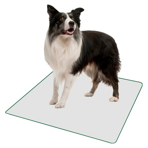 PoochPad Indoor Potty Replacement Reusable Pad - L - image 1 of 1
