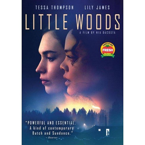 Little Woods (DVD)(2019) - image 1 of 1
