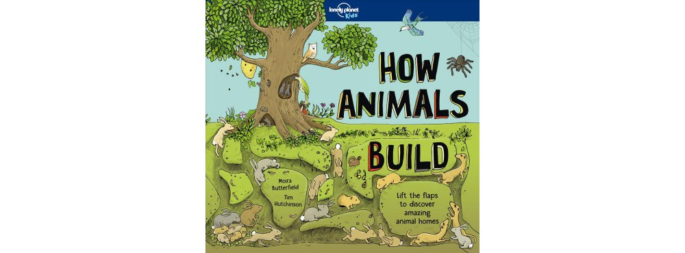 How Animals Build - (Lonely Planet Kids) by Moira Butterf...