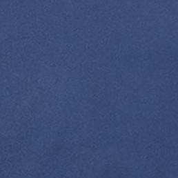 Midnight Vista Blue