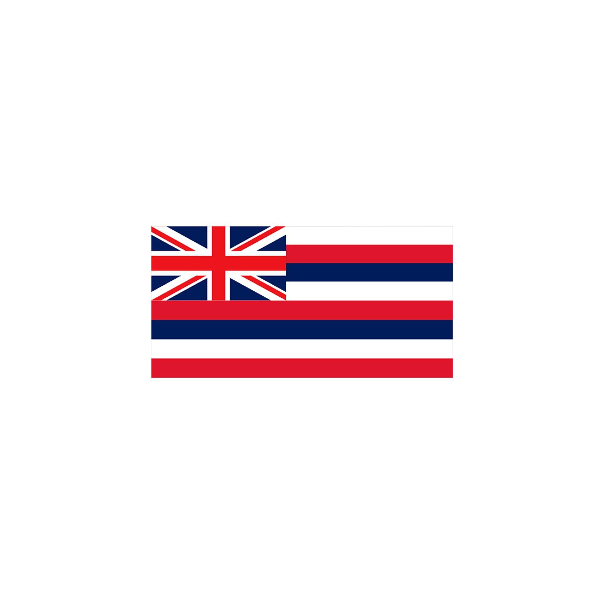 Halloween Hawaii State Flag - 4' x 6'