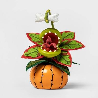 Creepy Succulent in Pumpkin Orange Halloween Décor - Hyde & EEK! Boutique™