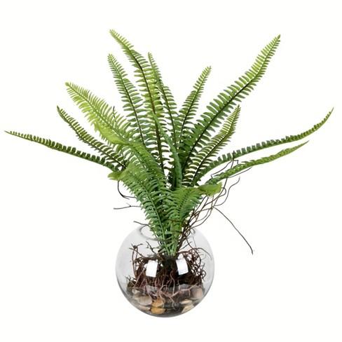 "Vickerman 15.5"" Green Fern In Glass Pot. - image 1 of 2"