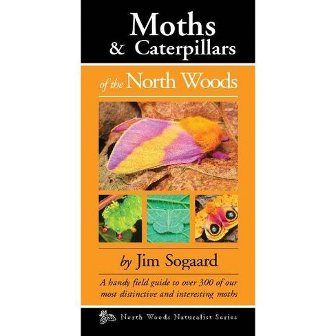 Moths & Caterpillars of the North Woods - by  Jim Sogaard (Paperback) - image 1 of 1