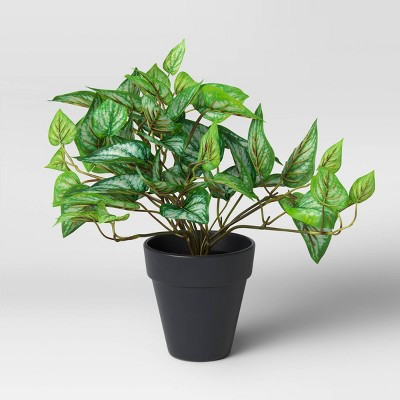 Faux Philodendron in Pot Green/Black - Threshold™