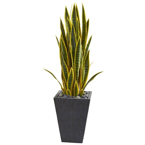 42 X 12 Artificial Sansevieria Plant In Slate Planter Gray Nearly Natural Target