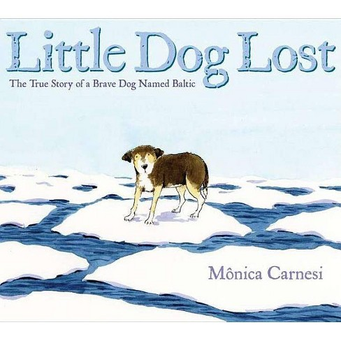 Little Dog Lost - by  Monica Carnesi (Hardcover) - image 1 of 1