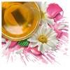 Tazo Calm Chamomile Herbal Tea - 20ct - image 4 of 4