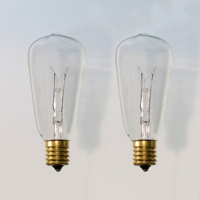 2pk Light Bulbs Vintage - Clear Bulbs - Smith & Hawken™