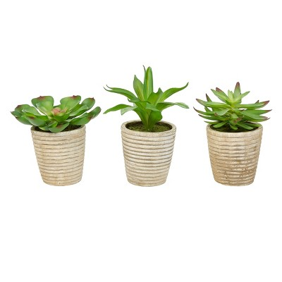 Faux Succulents - Assorted Lifelike Plastic Greenery Arrangements in Decorative Vases for Indoor by Nature Spring (Set of 3)