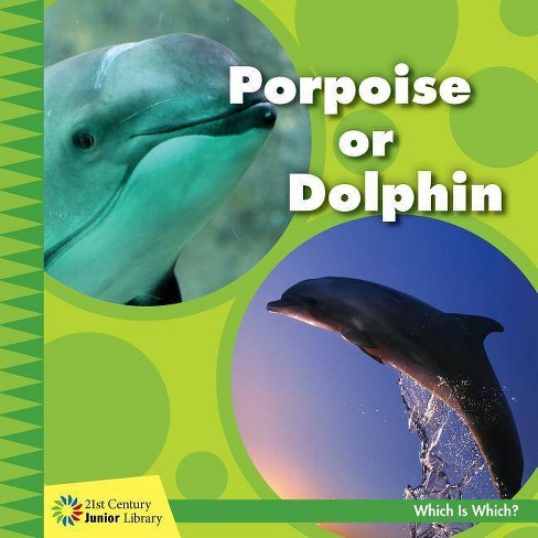 Porpoise or Dolphin - (21st Century Junior Library: Which Is Which?) by  Tamra Orr (Paperback) - image 1 of 1